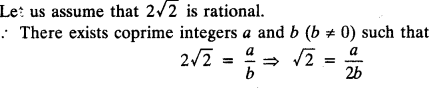 Real Numbers Chapter Wise Important Questions Class 10 Mathematics 10