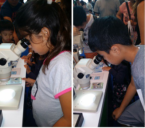 Science Fest with Science Bob