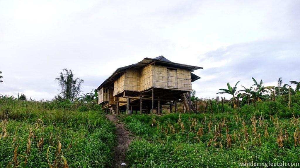 Tiboli culture