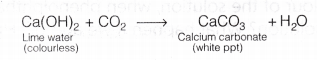 cbse-class-10-science-lab-manual-types-reactions-2