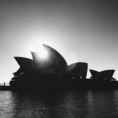 #sundaymorning #sunrise in #blackandwhite @sydneyoperahouse @sydney @visitnsw @australia #ilovesydney #sydney #summer #newsouthwales #wanderlust #travel #australia #seeaustralia #sydneyfolk #australiagram #sydneytravel #travel #guardiantravelsnaps #guardi