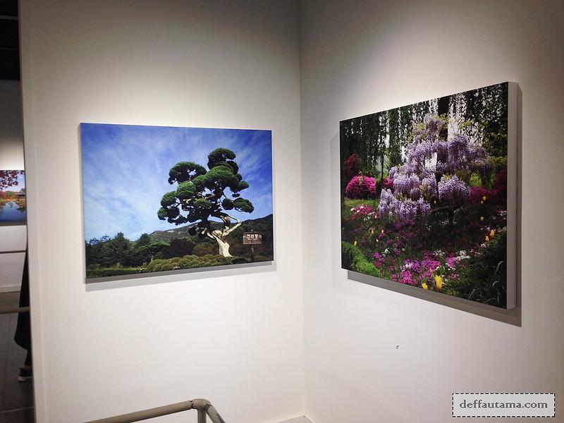 Garden of The Morning Calm - Photo Gallery