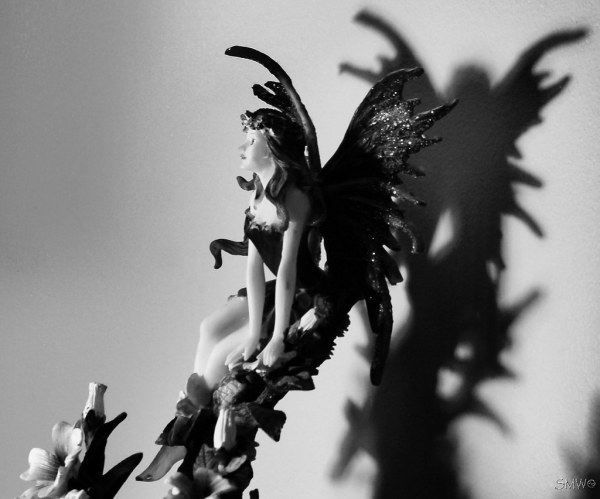 Shadow Fae