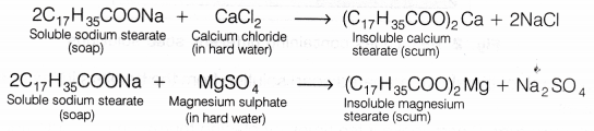 cbse-class-10-science-lab-manual-cleaning-capacity-soap-hard-soft-water-1