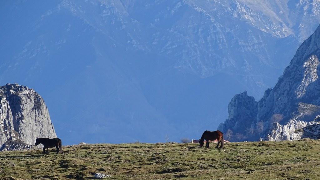 Parque Nacional Picos de Europa Asturias 09