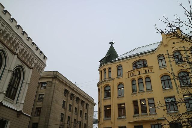 Kat op dak Riga