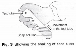 cbse-class-10-science-lab-manual-cleaning-capacity-soap-hard-soft-water-4