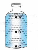 ncert-class-9-science-lab-manual-pressure-4