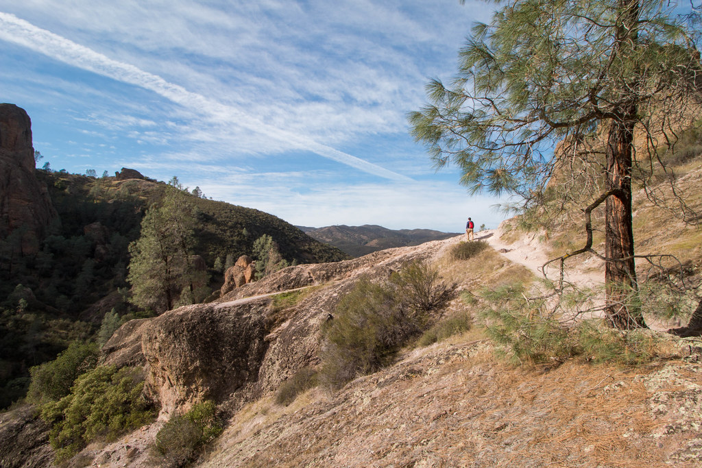 02.11. Pinnacles National Park