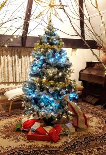 Christmas sevens