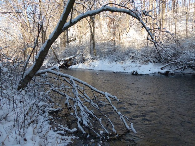 Gunpowder Falls in Snow
