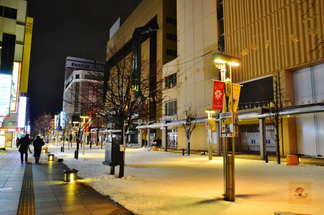 日本北海道JRINN旭川飯店30