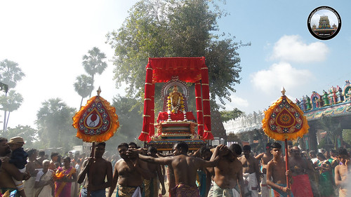 தேர்த் திருவிழா