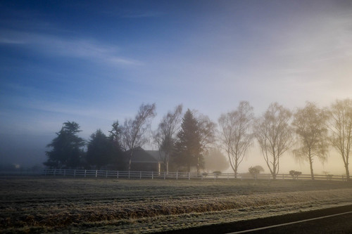 Skagit Valley Fog-004