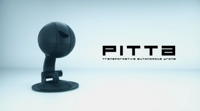 pitta-drone-camera-action-2018