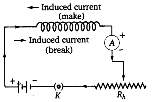 NEET Physics Notes Electromagnetic Induction-Self