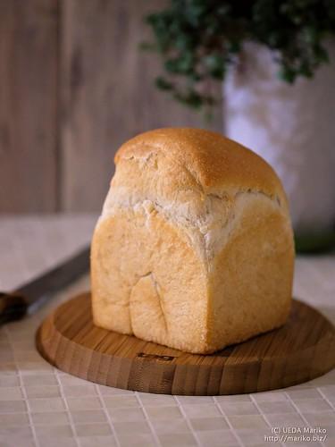 マンゴー酵母の食パン 20180205-DSCT2416 (2)