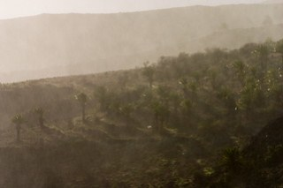 Rückweg mit Regen