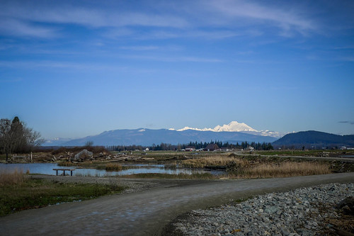 Skagit Wildlife Area-003