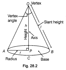ncert-class-9-maths-lab-manual-form-cone-sector-circle-2