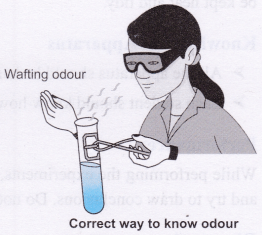 ncert-class-10-science-lab-manual-introduction-3