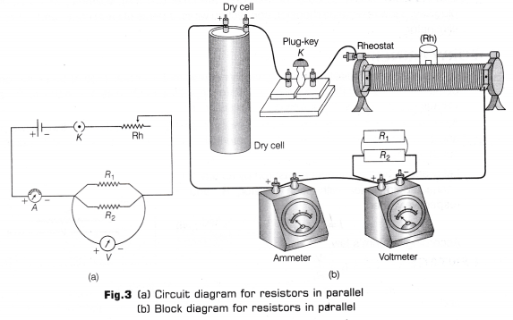 cbse-class-10-science-lab-manual-resistors-parallel-3