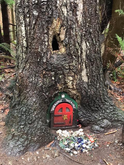 Nanaimo - little door closed