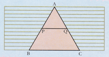 ncert-class-10-maths-lab-manual-basic-proportionality-theorem-triangle-2