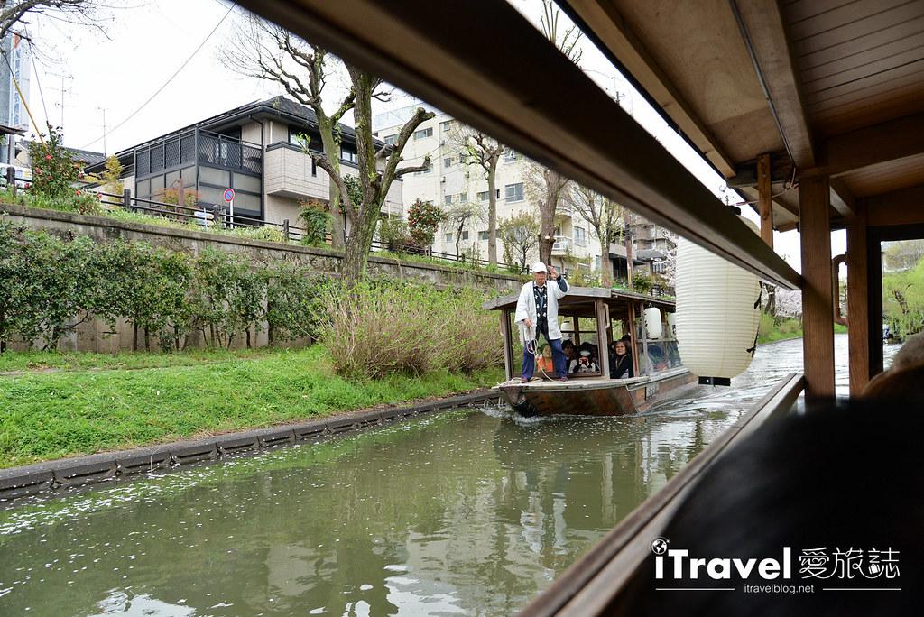 京都赏樱景点 伏见十石舟 (19)