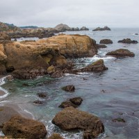Point Lobos: South Shore and Bird Island Trails