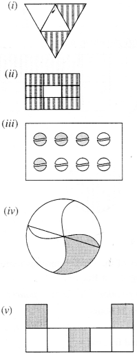 NCERT Solutions for Class 6 Maths Chapter 7 Fractions 1