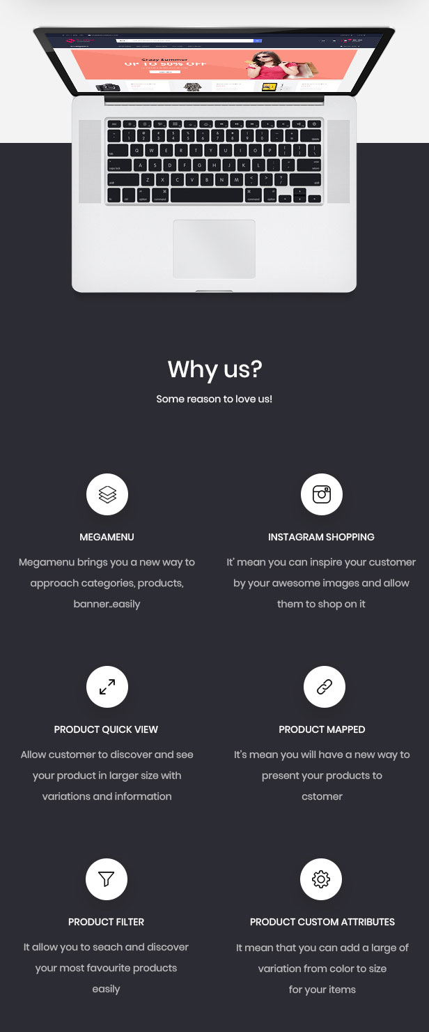 Leo feature - powerful module for hitech & Digital online store