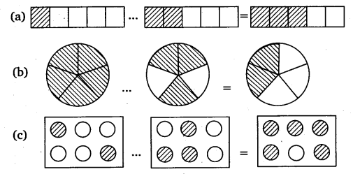 NCERT Solutions for Class 6 Maths Chapter 7 Fractions Ex 7