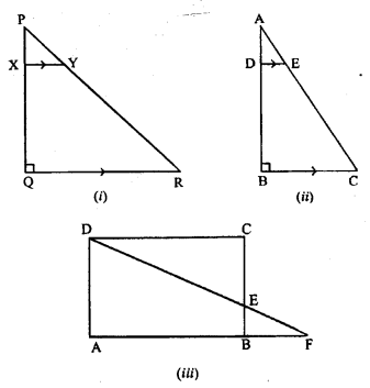 ML Aggarwal Class 9 Solutions for ICSE Maths Chapter 12 Pythagoras Theorem     pq