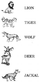NCERT Solutions for Class 2 English Chapter 8 Rain 19