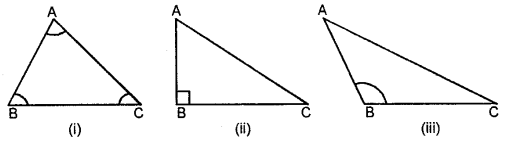 Selina Concise Mathematics Class 6 ICSE Solutions - Triangles (Including Types, Properties and Constructions) -7b