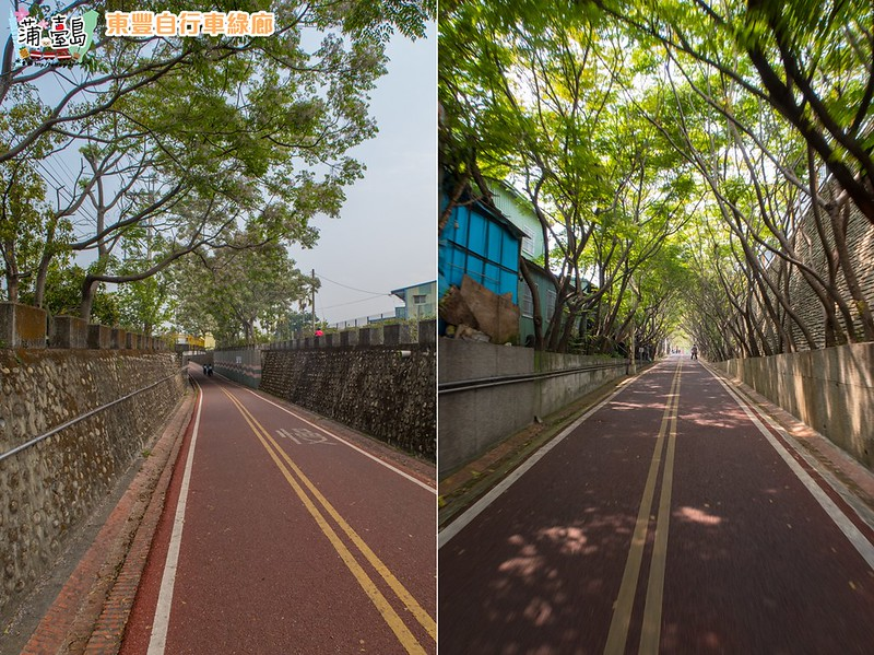 東豐自行車綠廊20