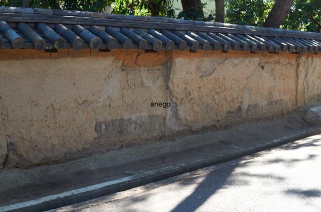 薬師寺 壁