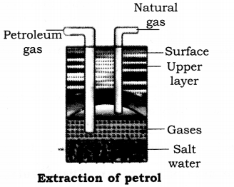 RBSE Solutions for Class 8 Science Chapter 18 Carbon and Fuel 2