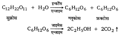 UP Board Solutions for Class 12 Chemistry Chapter 5 Surface Chemistry 4Q.3.2