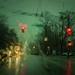 rain Renfrew tramlines