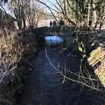 2018_12_12_7_Brücken_Aaretal_Kiesental (110)