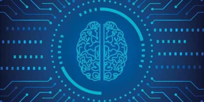 les-racines-biologiques-intelligence-neuroscience
