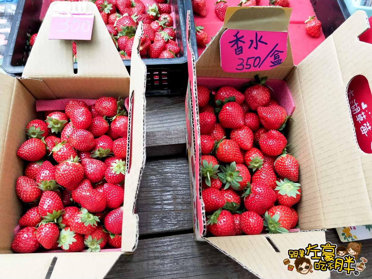 苗栗景點灣潭玫瑰草莓園~來去大湖採草莓~草莓多到採不完! – 跟著左豪吃不胖