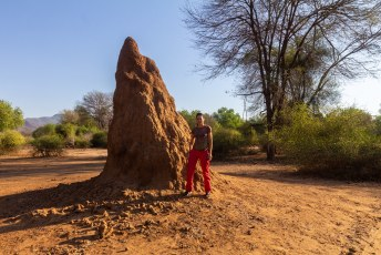 Lucía wilde even demonstreren hoe groot de termieten kathedralen kunnen worden.