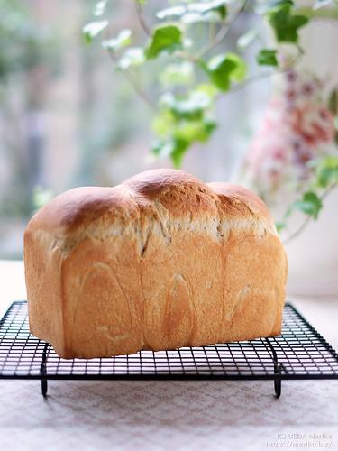 酒種酵母食パン 20190113-DSCT0439 (2)