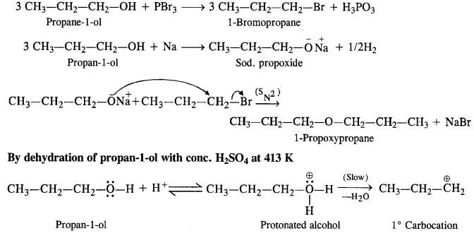 NCERT Solutions for Class 12 Chemistry Chapter 11 Alcohols, Phenols and Ehers ex 26