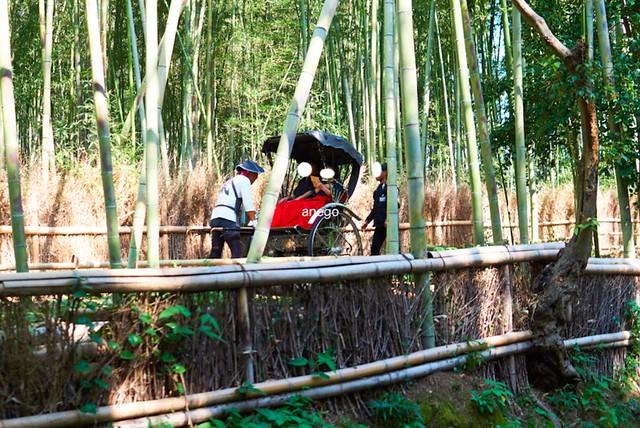 嵐山 人力車