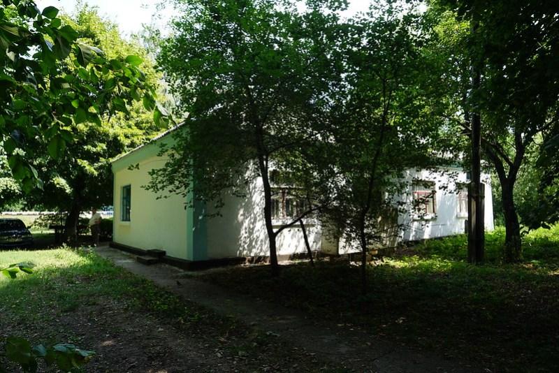 DSC06335