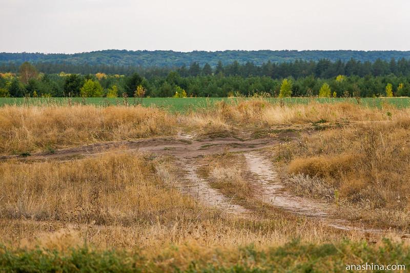 Полевая дорога, Саратовская область